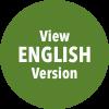 View English Version Button