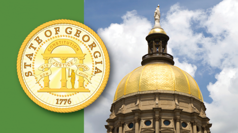 Green banner with a photo of the Georgia State Capitol on the right.